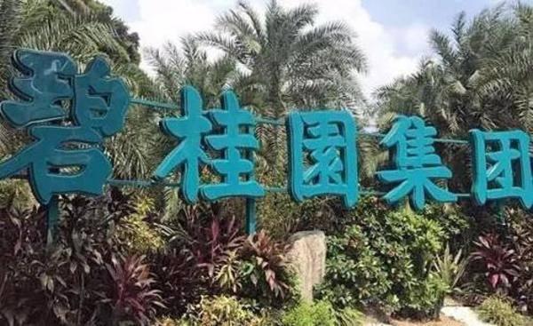 碧桂园业务范围扩展,直击家装行业!